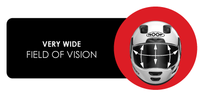 wide field of vision